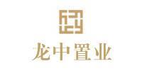 河南龙中置业有限公司