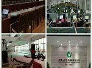 中国人寿河南省直创业职场企业形象