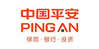 中国平安河南郑州分公司资元部