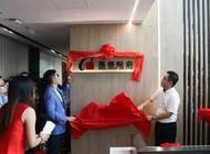 深圳市奇信集团股份有限公司河南分公司企业形象