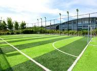 足球场地企业形象